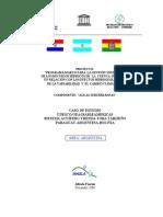 Informe Final Saytt Argentina