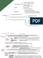 Esquema Tema 2 Categorización y Silogismos Uemc (1)