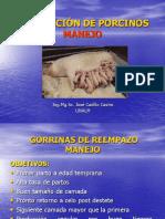 004 - Manejo Marranas 1