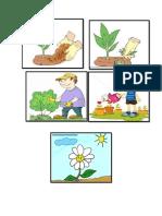 Cuidados de La Planta