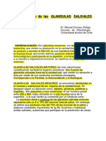 Apuntes de Glandulas Salivales