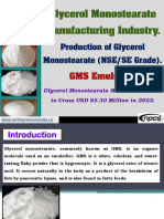 Glycerol Monostearate Manufacturing Industry