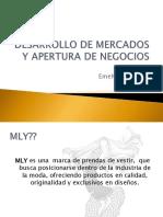 DESARROLLO DE MERCADOS Y APERTURA DE NEGOCIOS-1.pdf