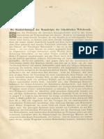 1895-Die Handzeichnungen Der Manuskripte Der Schedelschen Weltchronik (H. Stegmann)