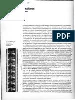 espana-claudio-emergencia-y-tensiones.pdf
