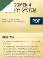 URINARY SYSTEM - GROSS 2016 (1).pptx