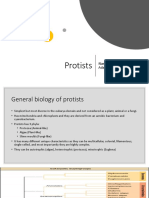 Chapter 10 Protist