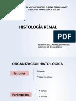 HISTOLOGÍA RENAL mio.pptx