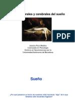 Bases neurales y cerebrales del sueño.pdf