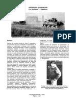 Organizacao Militar Alemã 2ª Guerra Mundial