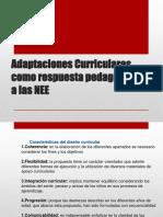 Adaptaciones Curriculares - Matriz