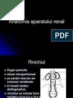 Anatomia Aparatului Renal