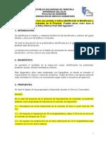 Informe Desarrollo Proyecto