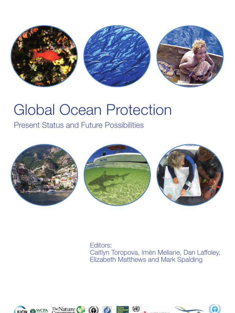 Global Ocean Protection: Current Trends and Future Opportunities