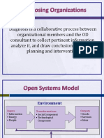 Diagnosing Organizations, Groups and Jobs.pptx