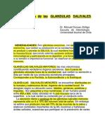 Apuntes_de_Glandulas_Salivales.pdf