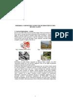 URMĂRIREA COMPORTĂRII COSTRUCŢIILOR HIDROTEHNICE PRIN METODE CLASICE.doc