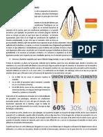 Cemento dentario (1).docx