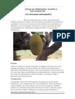 Boas Práticas na Preparação, Plantio e Pós Plantio de Jaca.pdf