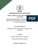 Coordinación óculo manual en el desarrollo de destrezas.pdf