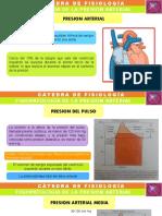 Fisiologia - Seminario, Fisiopato de La Presión Arterial