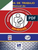 Tarjetas-MHEGAS-20-12final.pdf