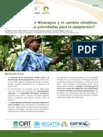 Análisis de Vulnerabilidad Nicaragua.