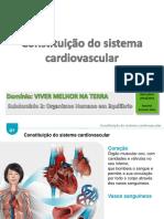 18_19_5_sistema_cardiovascular.pdf