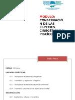 1. PRESENTACION CAZA Y PESCA. Power point [Reparado].pptx