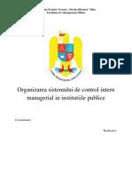 CIM-Organizarea Sistemului CIM in Institutiile Publice