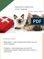 Primeiros Socorros Em Pequenos Animais