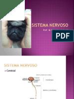 Sistema Nervoso - veterinária