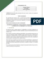 informe suelos contaminados
