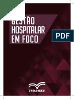 2016 Gestão Hospitalar Em Foco