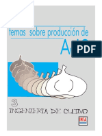 producion de ajo