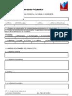 04 Formato Proyecto Soc-Prod
