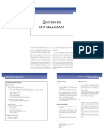 quistesdelos maxilares.pdf