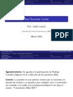 Lecture - RBC (Slides) (1) -real busines cicle uba