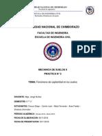 Informe III Suelos Capilaridad