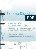 Anatomia y Fisiologia Digestiva