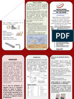 oficial triptico.pdf