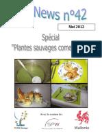 Plantes Sauvages Commestibles