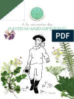 À La Rencontre Des Plantes Sauvages Comestibles Connected by Nature