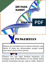 KELMPK. 2