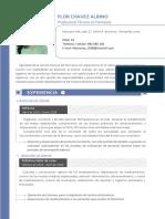 Curriculum Vitae Flor Chavez Albino