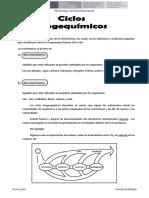 Resumen Del Ciclo Biogequimicos (1)