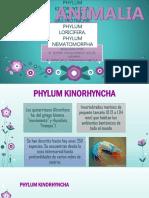 PHYLUM KINORHYNCHA [Autoguardado].pptx