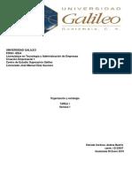 TAREA 1- Organizacion y Estrategia 12133047