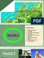 MalikT