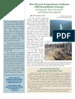West Branch Susquehanna Subbasin AMD Remediation Strategy